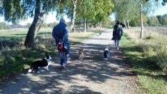 Familienspaziergang in der Heide